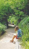 Jardin d'été au musée du Quai Branly