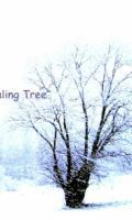 The Healing Tree - rock indé - à Pontoise (95) - Fête de la Musique 2017