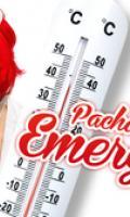 Pacha Crazy Emergency