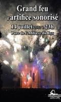 Feu d'artifice du 14 juillet à Dammarie Les Lys