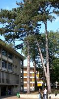 Lycée Louis Bascan - Journées du Patrimoine 2017