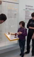 Archéa, musée d'archéologie en pays de France - Journées du Patrimoine 2017