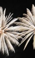 Fête Nationale à Cachan : pique-nique, bal et feu d'artifice !