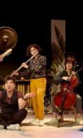 Le Carnaval des animaux sud-américains / Ensemble ALMAVIVA