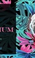 Novorama présente Le Décorhum